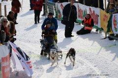 Todtmoos2007_Greylikewolves10.jpg