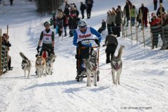 Todtmoos2007_Greylikewolves21.jpg