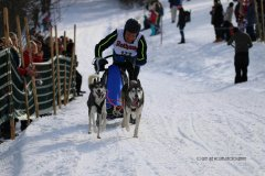 Todtmoos2007_Greylikewolves36.jpg