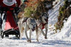 Todtmoos2007_Greylikewolves45.jpg
