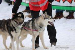 Todtmoos2007_Greylikewolves77.jpg