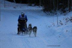 Todtmoos2007_Greylikewolves81.jpg