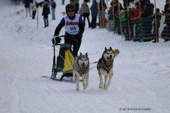 Todtmoos2007_Greylikewolves92.jpg