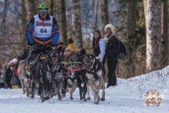 Internationales_Schlittenhunderennen_Todtmoos_25_von_49.jpg
