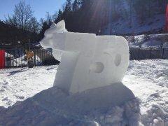 Wintersport-im-Ort-Todtmoos_2018_-13.jpg