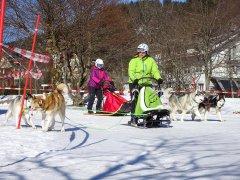 Wintersport-im-Ort-Todtmoos_2018_-23.jpg